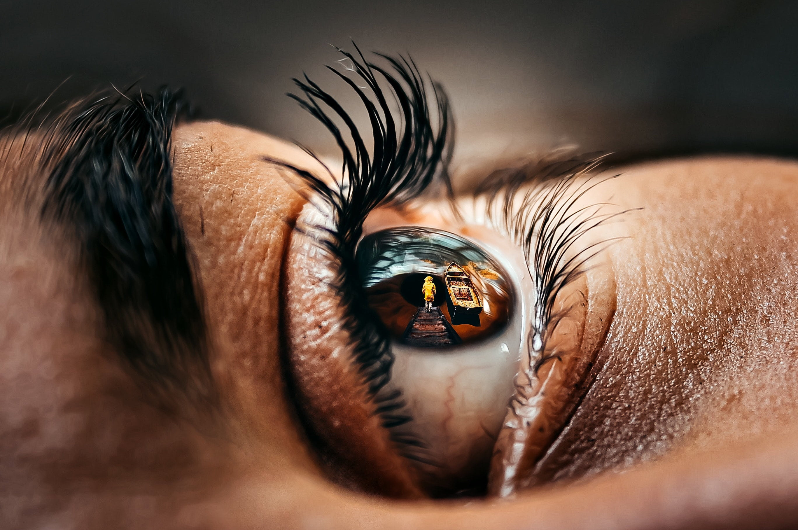 Vedere è il modo migliore per apprendere